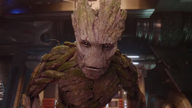 Vin Diesel's Groot is one of the films great triumphs, both in terms of CGI and characterisation.