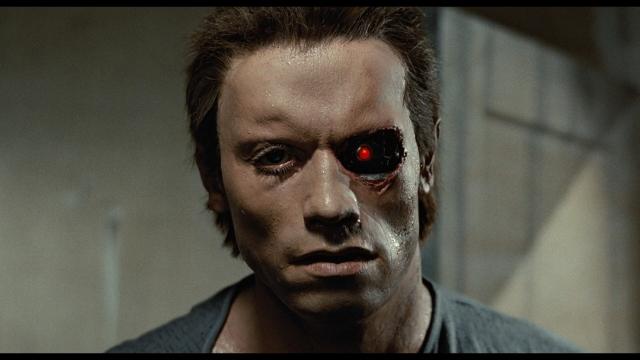 Goal_Terminator